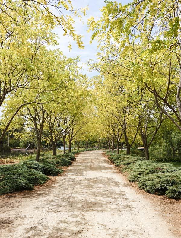 JamesTutton-driveway