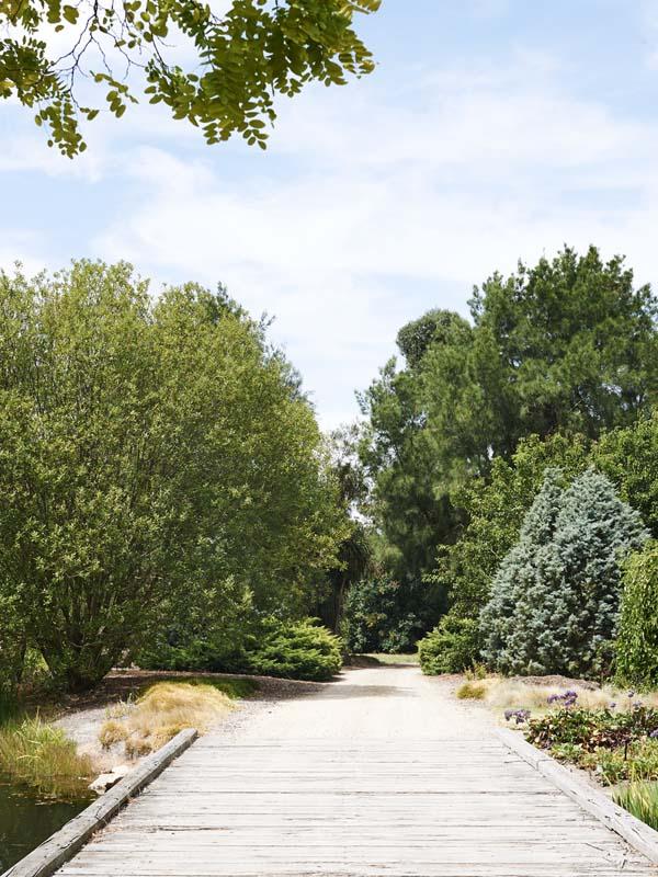 JamesTutton-garden1
